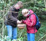 fungus-hunt2006.jpg